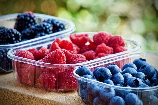 fruits in survival garden