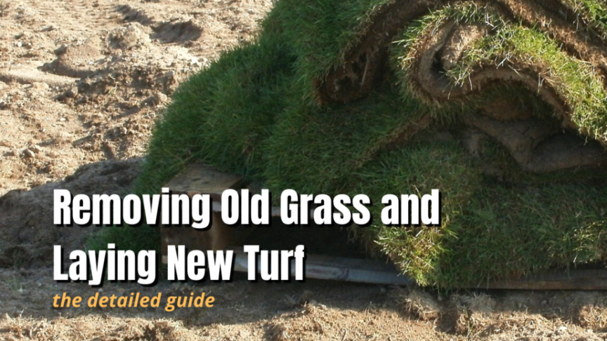 removing old grass and installing new grass
