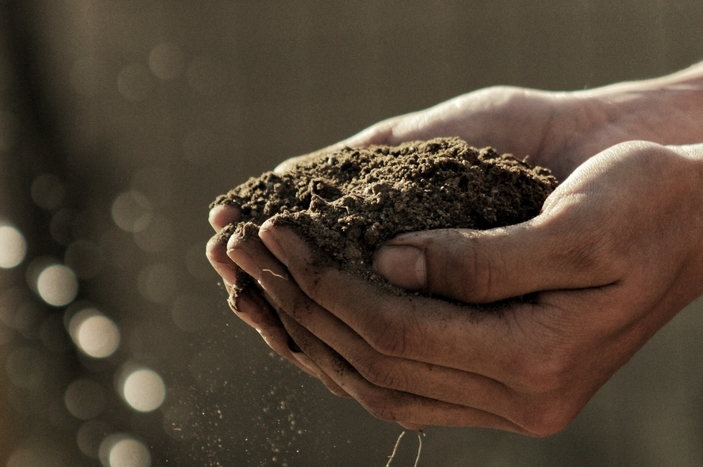 test soil winter