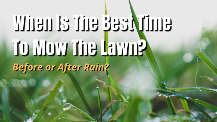 best time to mow lawn rain