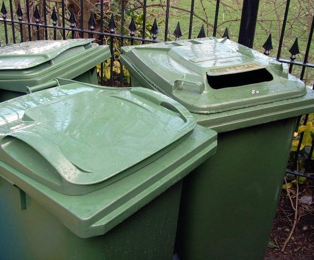 grass in green compost bin