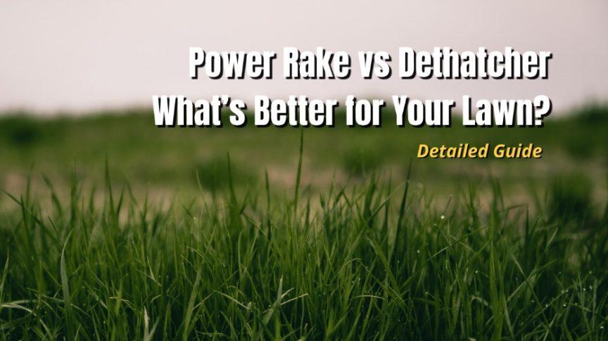 power rake vs detatcher