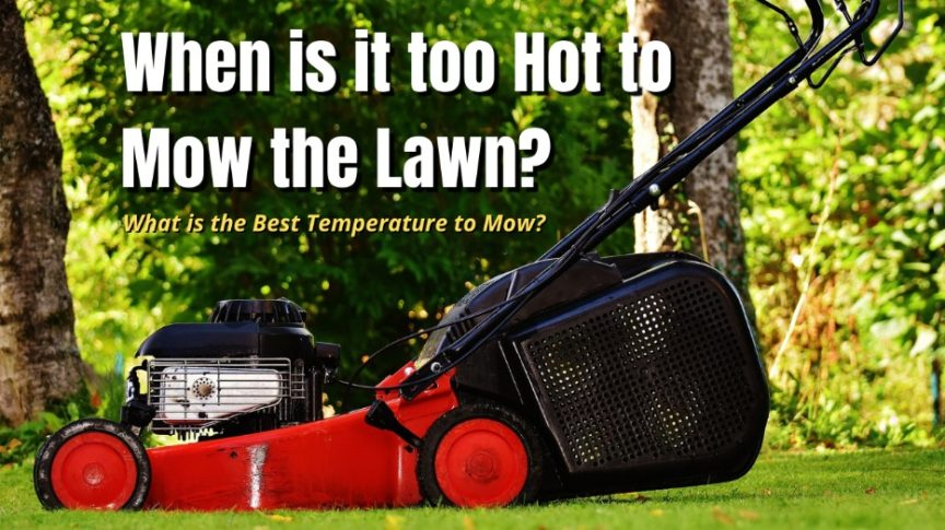 when is it too hot to mow the lawn