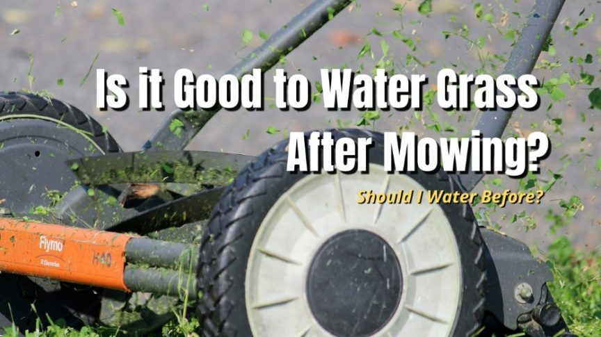 is it good to water grass after mowing