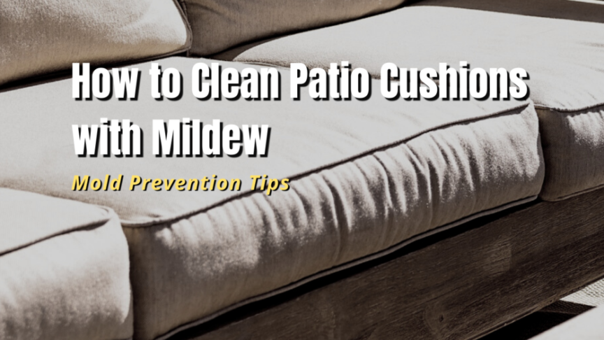 clean patio cushions with mold and milder
