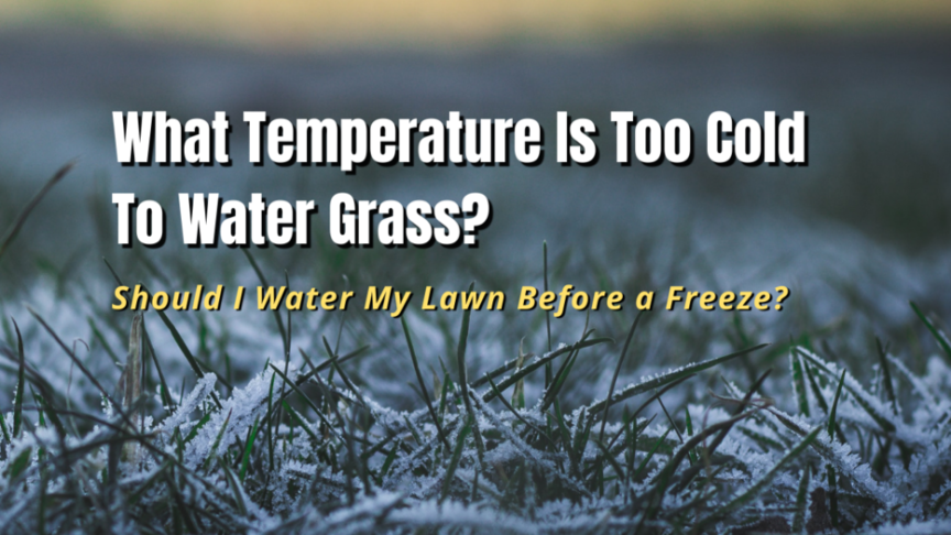 what temperature is too cold to water grass