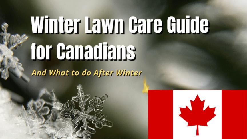 canada lawn care