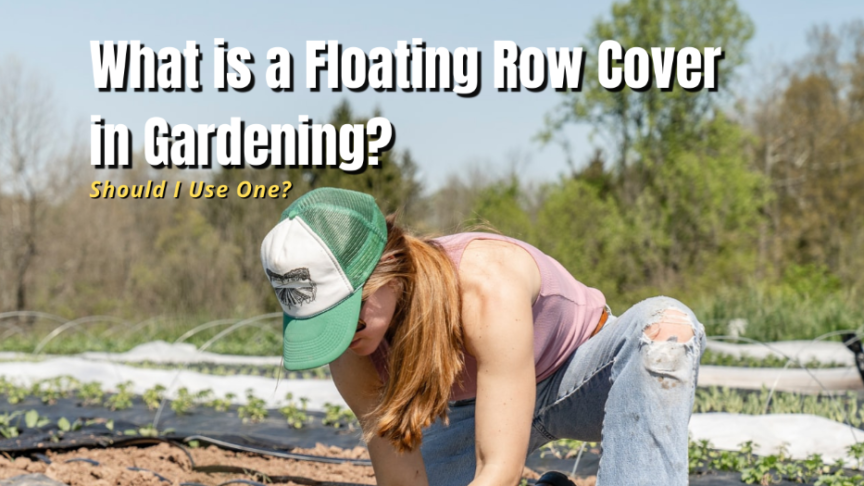 what is a floating row cover