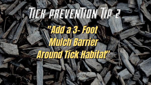 tick prevention 2
