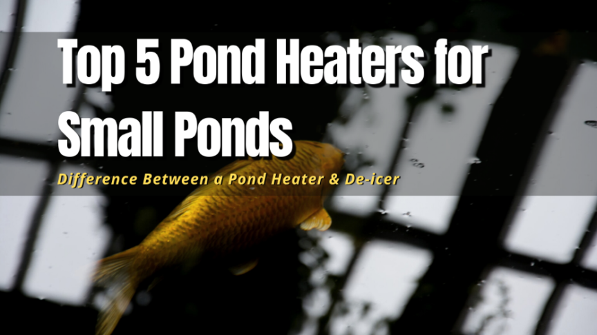 best pond heaters for small ponds